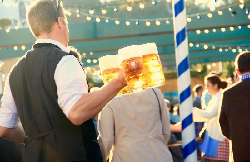 Tour Oktoberfest Wies'n Beefestival Transfer Ibel München
